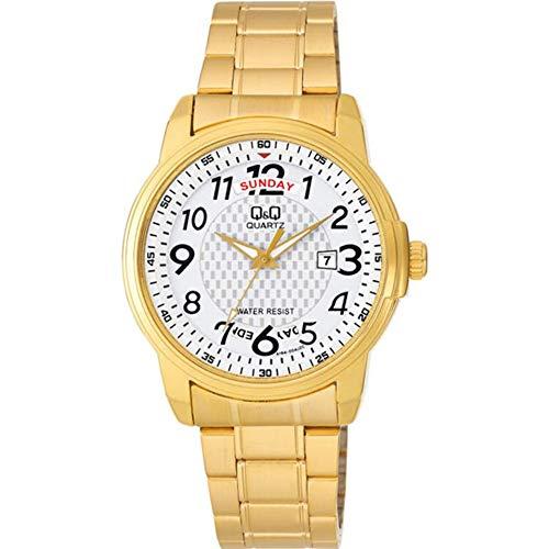 Q&Q Reloj Hombre Standart Analógico Cuarzo A184J004Y