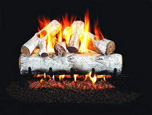 Review Real Fyre 30-inch White Birch Vented Gas Logs Bundled with G4 Burner Kit (Natural Gas)