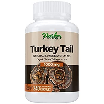 Premium Organic Turkey Tail Mushroom Capsules by Parker Naturals Supports Immune System Health. Nature's Original Superfood. 240 Capsules …