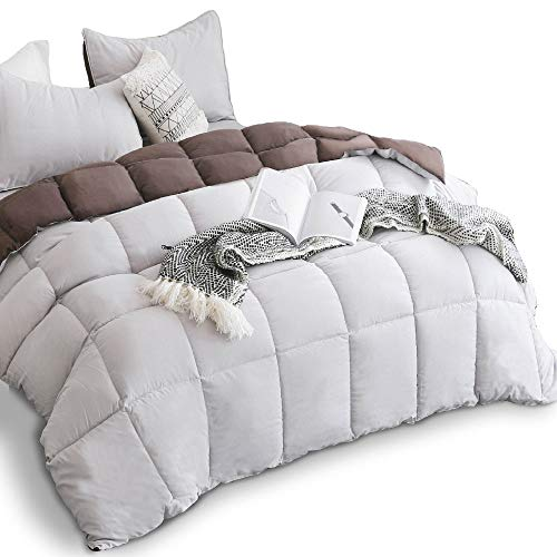KASENTEX All Season Down Alternative Quilted Comforter Set with Sham(s) -Reversible Ultra Soft Duvet Insert Hypoallergenic Machine Washable, Twin, Silver Cloud/Chocolate Brown