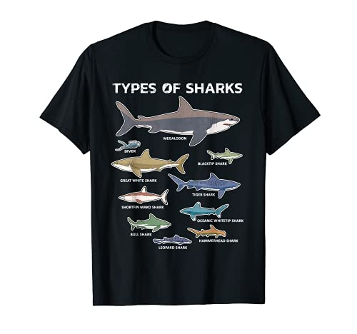 9 Tipos de Tiburones Gráfico Educativo Colorado Ingles Camiseta