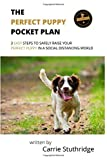 The Perfect Puppy Pocket Plan: 3 Easy Steps To Safely Raise Your Perfect Puppy in a Social Distancing World