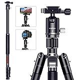 SAMTIAN 1650mmカメラ三脚 DSLR/一眼レフに対応 4段式 耐荷重12㎏ 2-in-1三脚一脚 自由雲台付き ビデオ三脚 360度パノラマ撮影 カメラ・スマホ対応可能