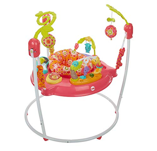 Fisher-Price Petals Jumperoo, New-born Baby Activity Centre...