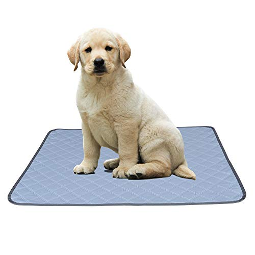 Pefirst Washable Pee Pads for Dogs +Free Grooming Gloves, Puppy Pads Reusable Dog Training Pads Super Absorbing Non-Slip for Crate, Playpen, Pee Tray (35.4
