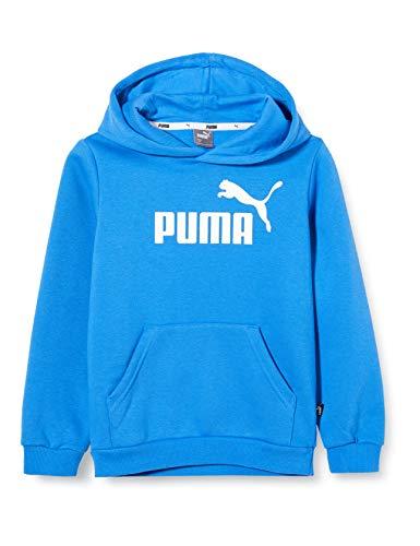 PUMA Jungen ESS Logo Hoody FL B Pullover, Palace Blue, 176