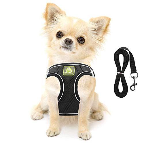 FEimaX Hundegeschirr für Hunde mit Leine, Weich Mesh Brustgeschirr für Kleine und Mittlere Hunde, Verstellbare Reflektierende Atmungsaktive Welpengeschirr