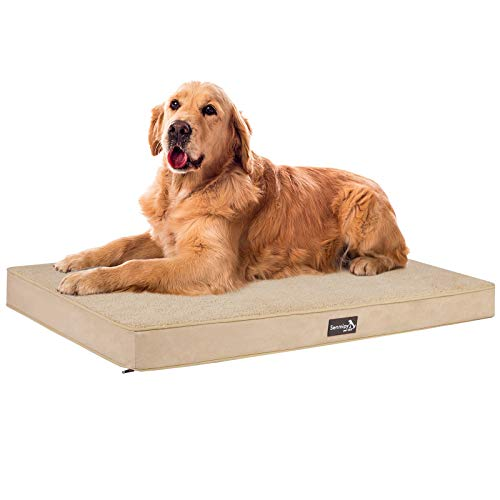 Senmipy Orthopedic Memory Foam Dog Bed for Large Dogs, 2-Layer Thick Waterproof Extra Large Jumbo Dog Bed, Washable Pet Beds Mattress with Removable Cover (Extra Large, Beige)