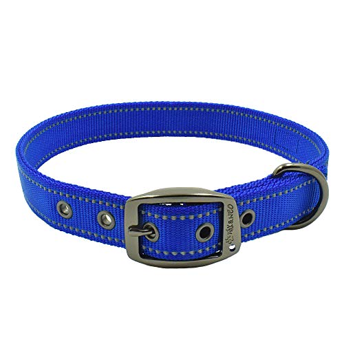 Max and Neo MAX Reflective Metal Buckle Dog Collar - We Donate a Collar to a Dog Rescue for Every Collar Sold (Small, Blue)