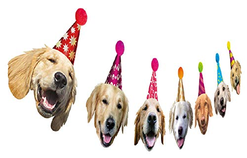 Golden Retriever Birthday Garland, Dog Face Portrait Birthday Banner, Bday Bunting Decoration