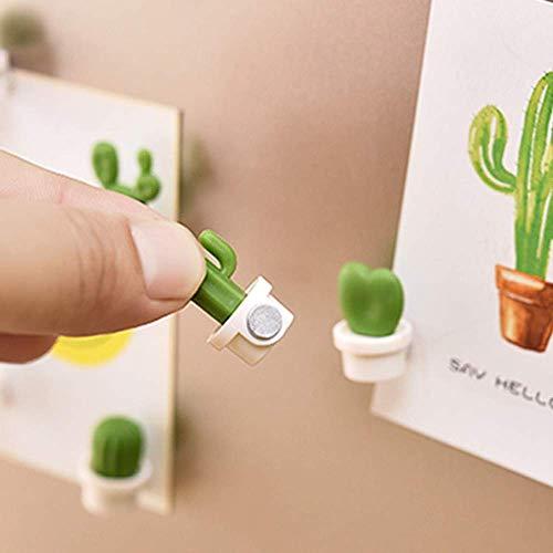 Sujing Sukkulenten-Magnete, süße und niedliche Dekoration, für den Kühlschrank, 6 Stück, Umweltfreundliches Kunstharz + Magnet, weiß