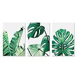 Rehomy 3 pinturas para pared, diseño de hojas de plátano, pintura de pared, estilo moderno, impreso, decoración para el hogar y la oficina