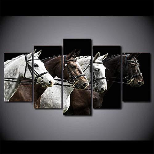 Nobrand afbeelding op canvas, HD-druk, 5 stuks, paarden zwart en bruin, wedstrijd, posters, kunstfoto's, muurfoto's, Iving Room, 20 x 35 x 45 x 20 x 55 cm, zonder lijst