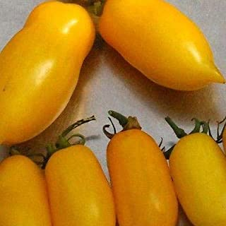 banana legs tomato seeds
