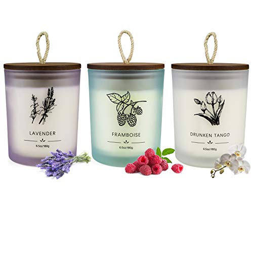 Scented Candle Set 3 Pieces, Candle for Woman 6.4 Ounces 30 Hours Lasting Aromatherapy Soy Candle with Frosted Jar and Twine Embellishment for Home Use and Gifting, Lavender, Raspberry, Mokara