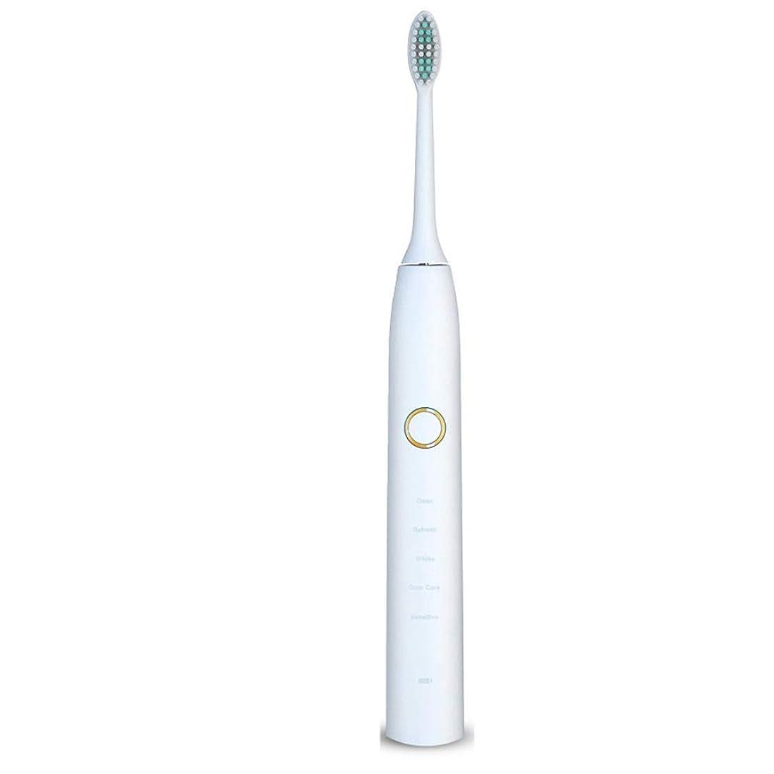 黒くする霜チーム電動歯ブラシ 電動歯ブラシUSB充電式ソフトヘア保護クリーンホワイトニング歯ブラシ ケアー プロテクトクリーン (色 : 白, サイズ : Free size)