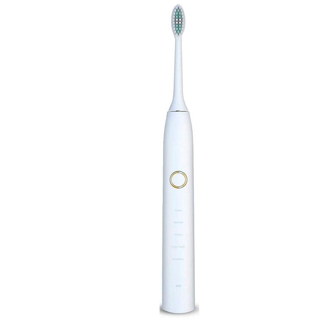 ホイッスル成り立つ満了電動歯ブラシ 電動歯ブラシUSB充電式ソフトヘア保護クリーンホワイトニング歯ブラシ (色 : 白, サイズ : Free size)