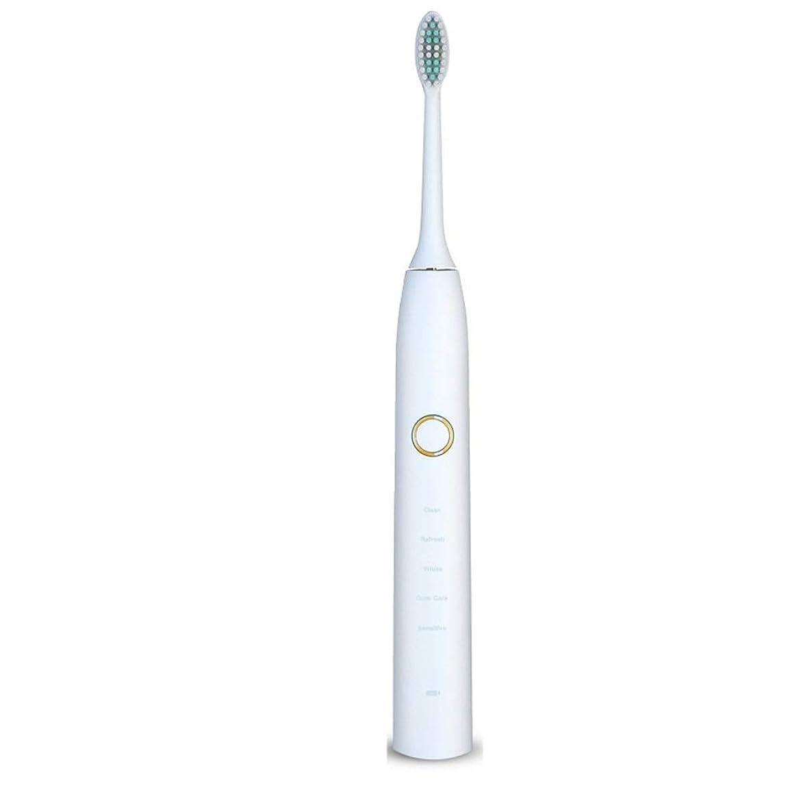 在庫アルカイックシンプルさ電動歯ブラシUSB充電式ソフトヘア保護クリーンホワイトニング歯ブラシ 完全な口腔ケアのために (色 : 白, サイズ : Free size)