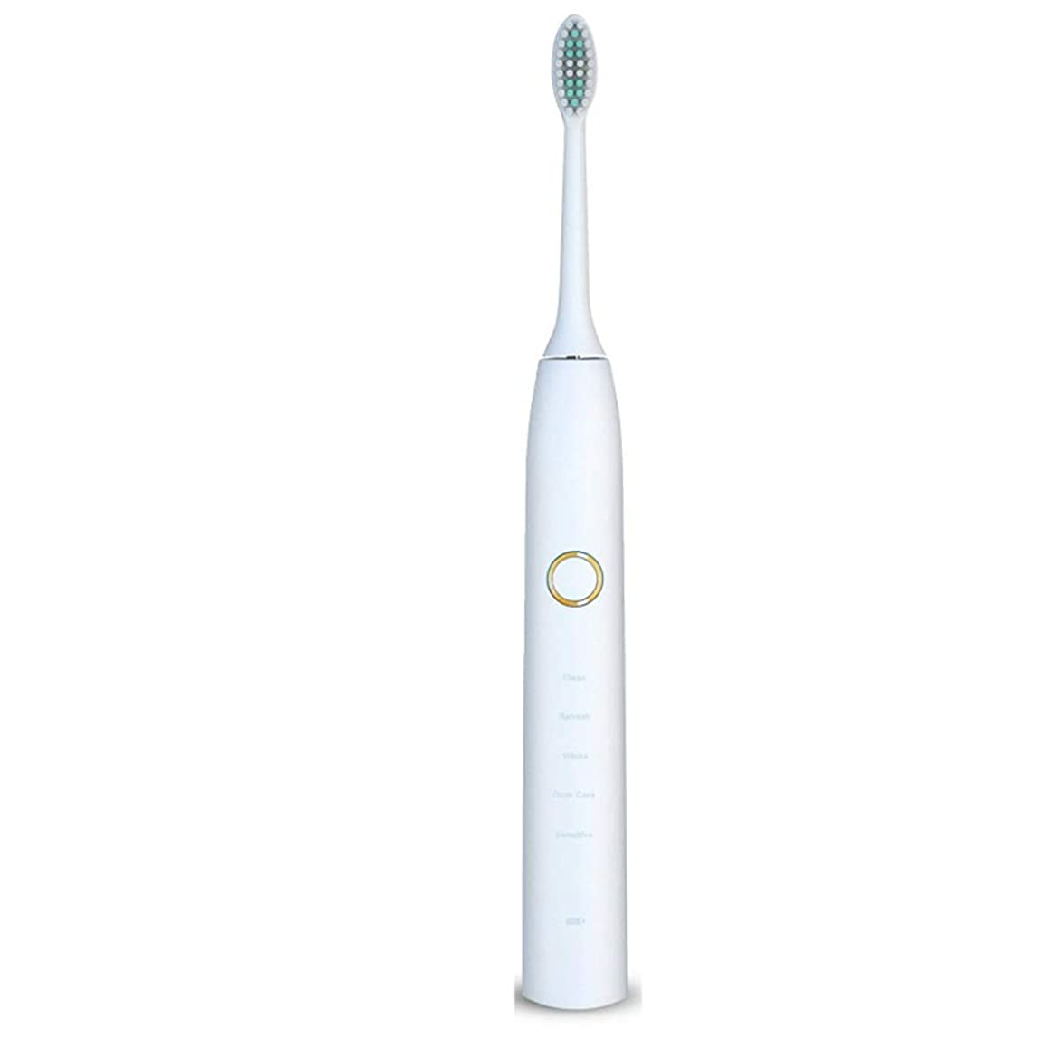 許容放射能制限家庭用電動歯ブラシ 電動歯ブラシUSB充電式ソフトヘア保護クリーンホワイトニング歯ブラシ 男性用女性子供大人 (色 : 白, サイズ : Free size)