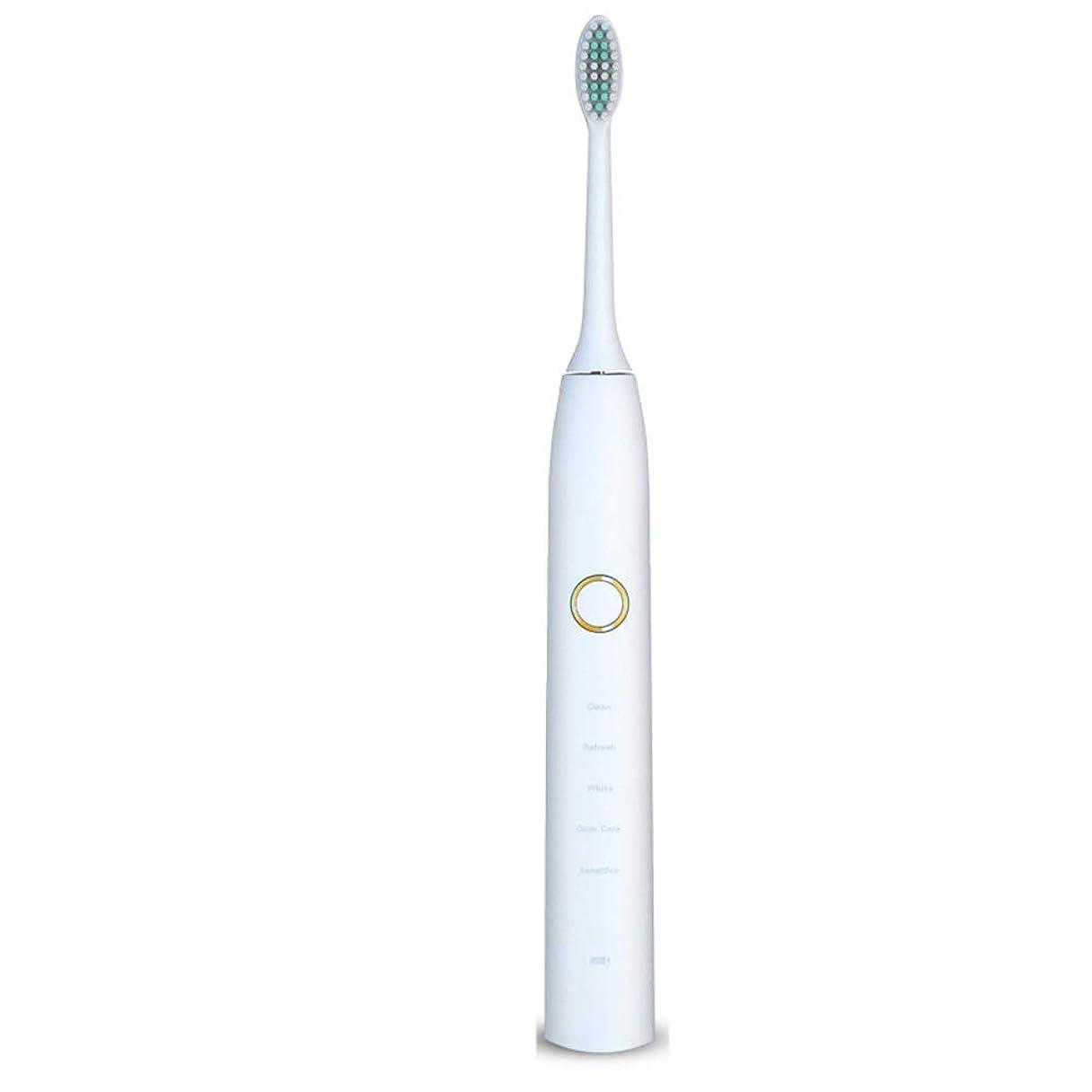 不名誉な用量行商人電動歯ブラシ 電動歯ブラシUSB充電式ソフトヘア保護クリーンホワイトニング歯ブラシ ケアー プロテクトクリーン (色 : 白, サイズ : Free size)