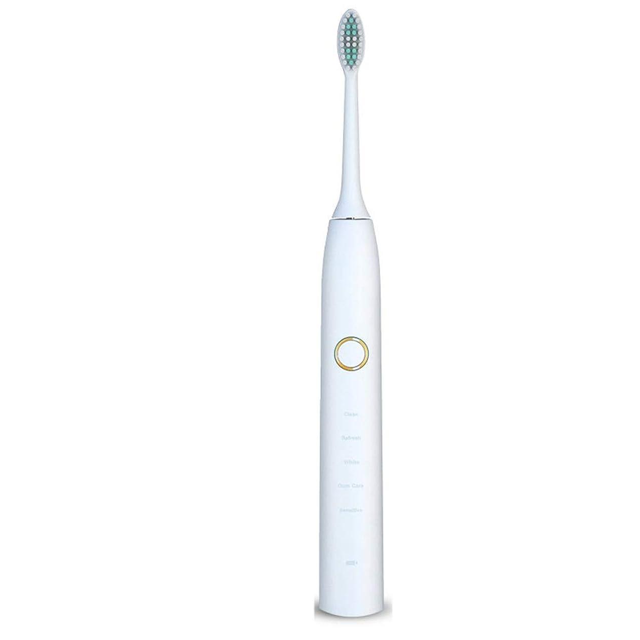 復活地球ネコ電動歯ブラシ 電動歯ブラシUSB充電式ソフトヘア保護クリーンホワイトニング歯ブラシ ケアー プロテクトクリーン (色 : 白, サイズ : Free size)