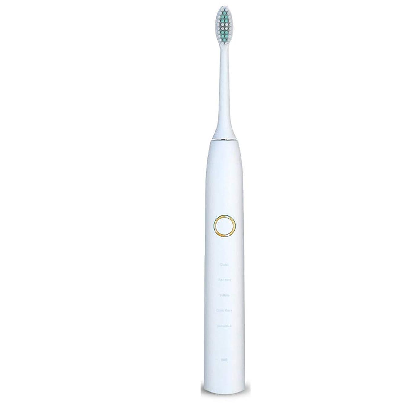 きちんとした見落とす取り扱い電動歯ブラシ 電動歯ブラシUSB充電式ソフトヘア保護クリーンホワイトニング歯ブラシ (色 : 白, サイズ : Free size)