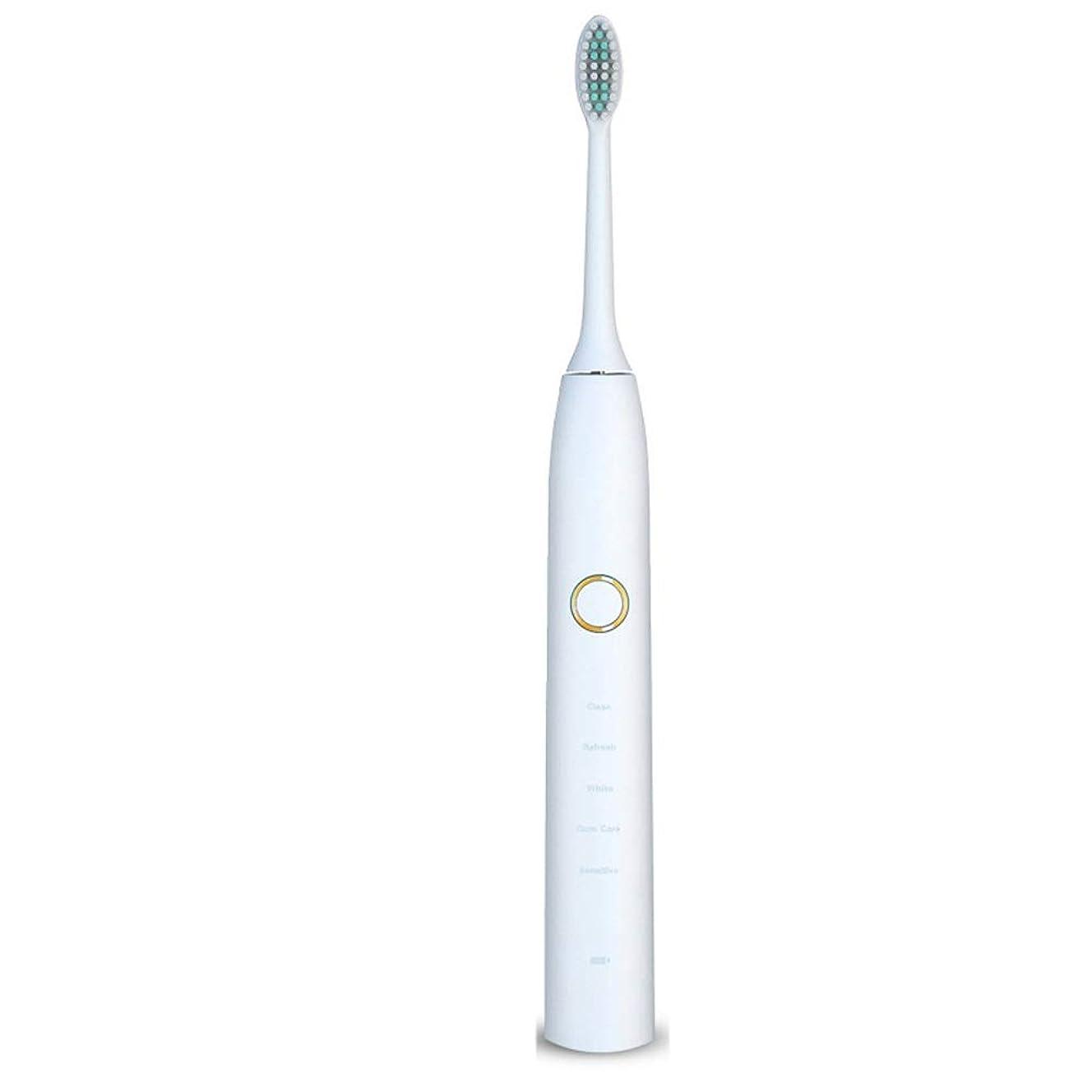 のみ最も遠い社員電動歯ブラシ 電動歯ブラシUSB充電式ソフトヘア保護クリーンホワイトニング歯ブラシ ケアー プロテクトクリーン (色 : 白, サイズ : Free size)