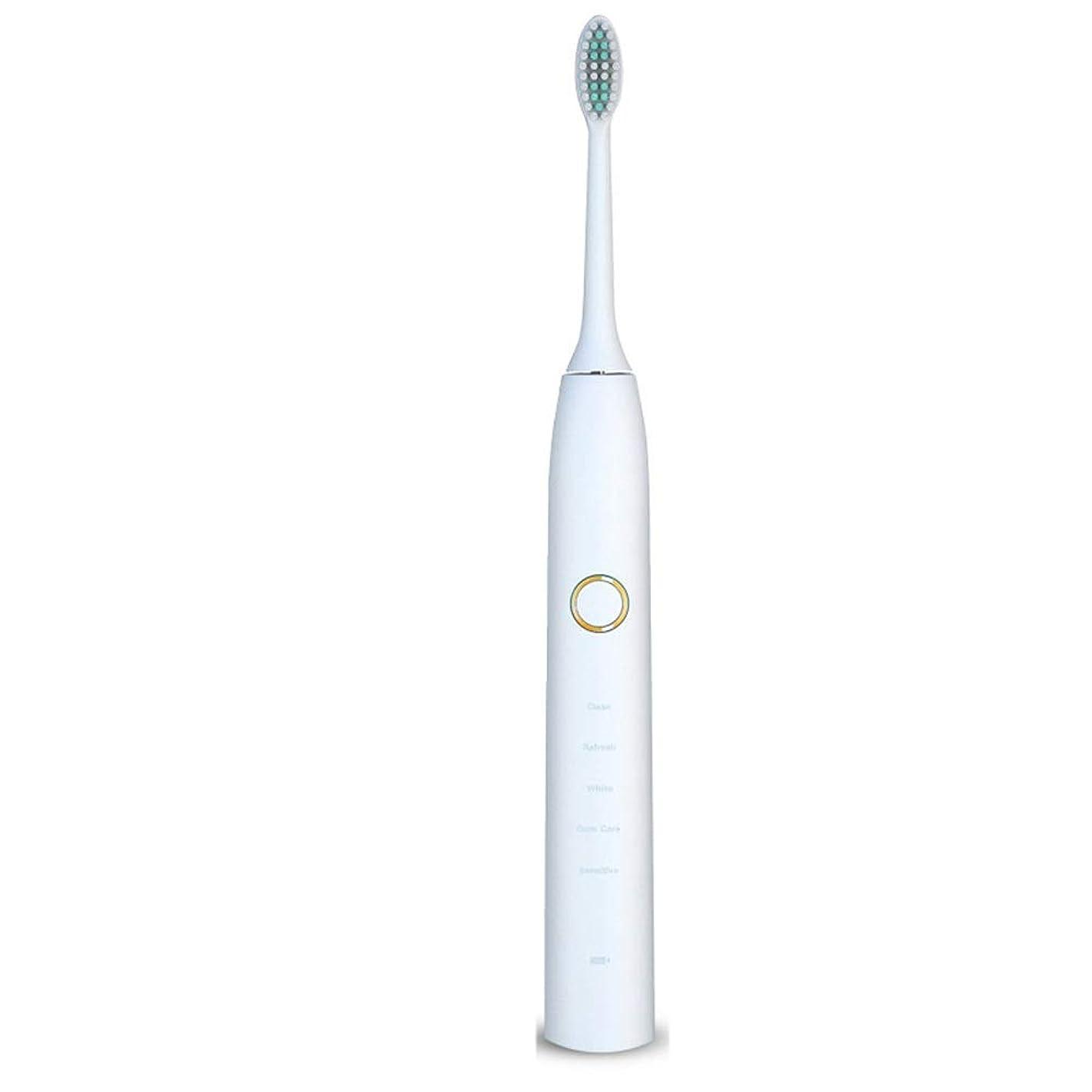 海藻降下反射自動歯ブラシ 電動歯ブラシを白くするUSB??の再充電可能で柔らかい毛の保護きれい (色 : 白, サイズ : Free size)