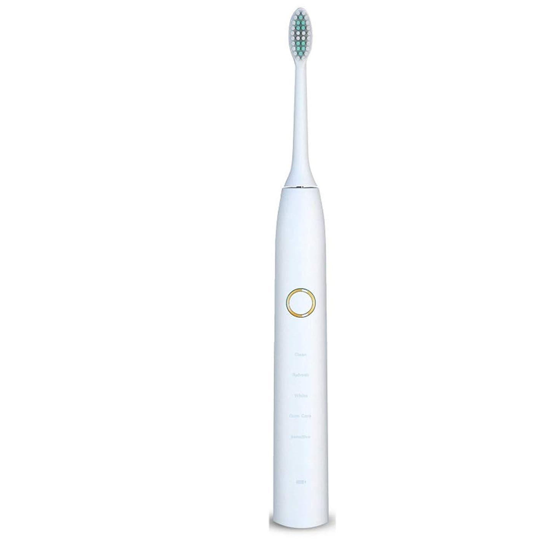 半球取得する錆び電動歯ブラシ 電動歯ブラシUSB充電式ソフトヘア保護クリーンホワイトニング歯ブラシ ケアー プロテクトクリーン (色 : 白, サイズ : Free size)