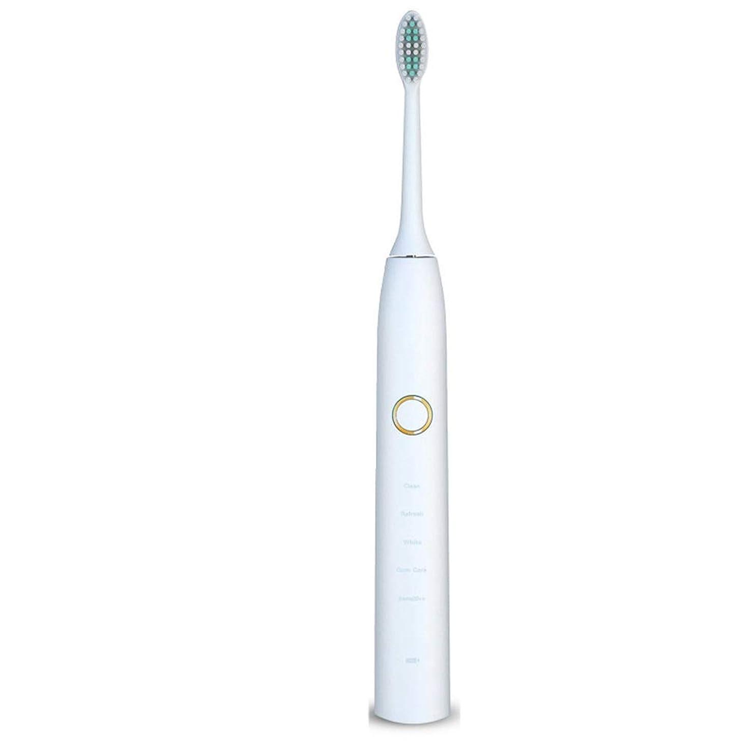 検査標高出会い電動歯ブラシ 電動歯ブラシUSB充電式ソフトヘア保護クリーンホワイトニング歯ブラシ ケアー プロテクトクリーン (色 : 白, サイズ : Free size)
