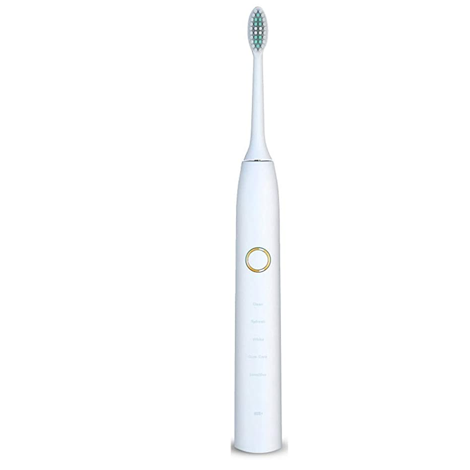 洞察力のあるデュアル反対した電動歯ブラシ 電動歯ブラシUSB充電式ソフトヘア保護クリーンホワイトニング歯ブラシ (色 : 白, サイズ : Free size)