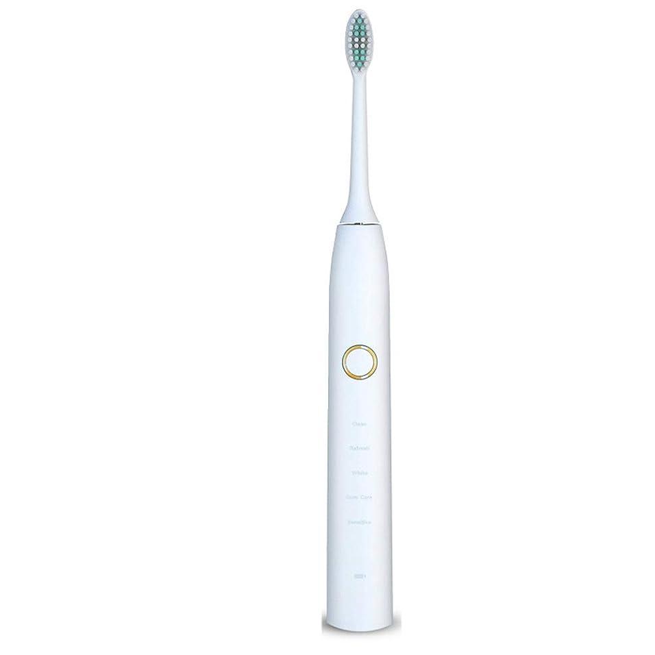 ブレンド戦士スリップ自動歯ブラシ 電動歯ブラシを白くするUSB??の再充電可能で柔らかい毛の保護きれい (色 : 白, サイズ : Free size)