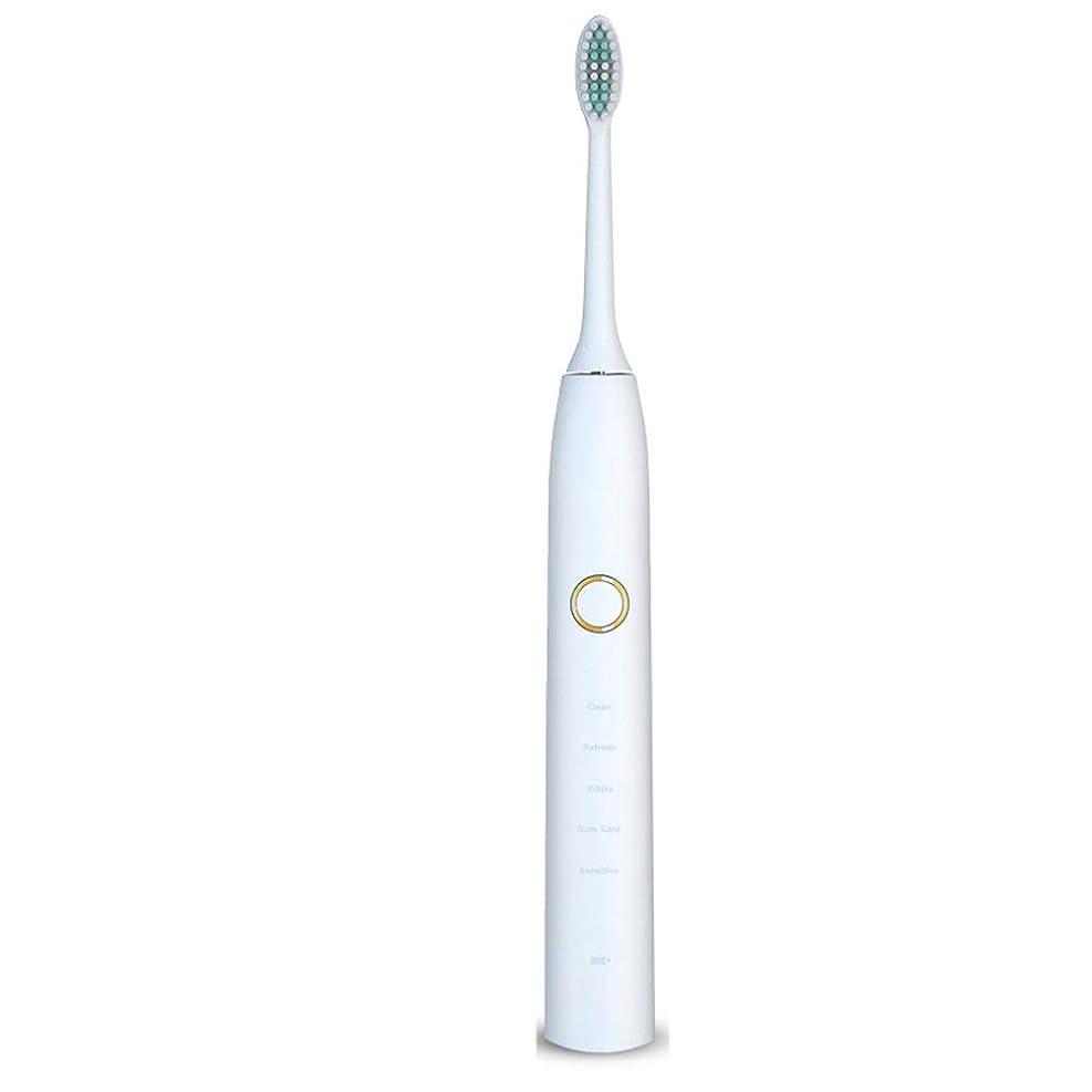 論争の的ホイストナイロン電動歯ブラシ 電動歯ブラシUSB充電式ソフトヘア保護クリーンホワイトニング歯ブラシ ケアー プロテクトクリーン (色 : 白, サイズ : Free size)
