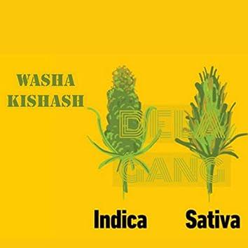 Washa Kishash