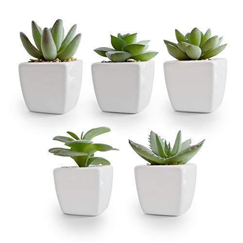 Korvea Set of 5 Artificial Succulent Plants in Ceramic Pots - Assorted Fake Succulents - Mini...