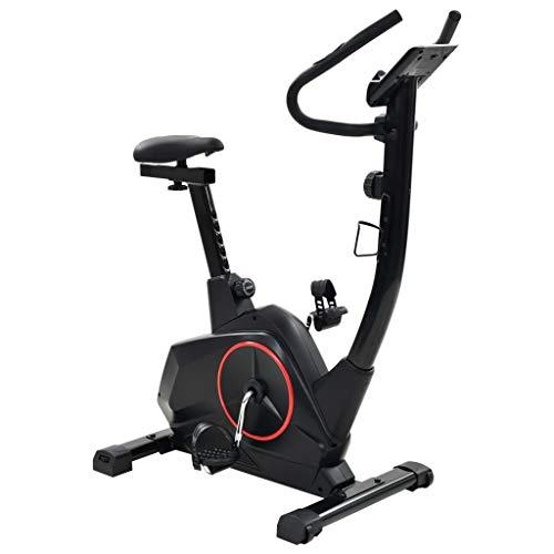 vidaXL Cyclette Reclinata Magnetica Misurazione del Polso XL Cardio Fitness