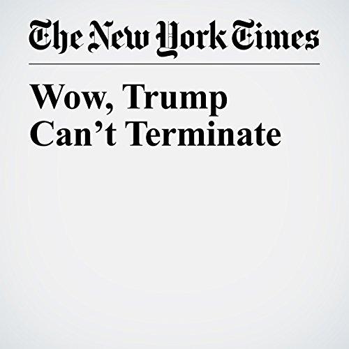 Wow, Trump Can't Terminate copertina