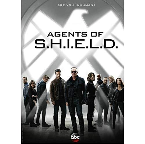 yitiantulong Etiqueta De La Pared Lienzo Pintura Ustv Drama Agents of Shield Season 7 The Final Season Agents Hydra Poster Wall Art H-501 (40X50Cm) Sin Marco