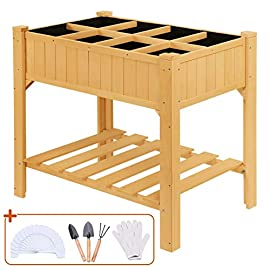 Quictent 35.4''L x 23.6''W x 35.4''H 8 Grids Cedar Raised Garden Bed Wooden Elevated Planter Kit Box 8.5'' Inner Height Stand for Herbs Vegetable Flower, 3 Shelves 50 T-Type Plant Tags Included 8 【8 Grids for Grow 8 Different Herbs】--- 2 installation methods, use the shelves to make 8 grids to grow different vegetables or herbs, or disassemble shelves to make a whole garden box to grow more. Give you more convenience to use it. 【High-quality Wood, Weight Capacity:440lbs】--- Very stable wood structure, all connected by screws, weight capacity: 440lbs, never worry about falling or legs broken. 【8.5'' Inner Height, Great for Plant Rooting】--- Inner size 8.5'', higher than other same products, great for plant to root and absorb nutrient from soil.