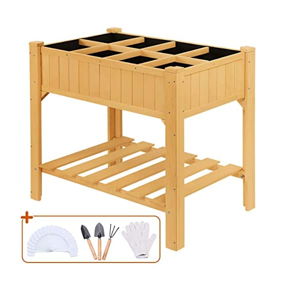 Quictent 8 Grids Raised Garden Bed 35.4''L x 23.6''W x 35.4''H Wooden Planter Kit Box with Legs for Herbs Vegetable and… 1 【8 Grids for Grow 8 Different Herbs】--- 2 installation methods, use the shelves to make 8 grids to grow different vegetables or herbs, or disassemble shelves to make a whole garden box to grow more. Give you more convenience to use it. 【100% Natural Wood Material,Weight Capacity:440lbs】--- This raised garden bed is made of non-paint natural cedar wood which can resist weather-related damage, won't warp, shrink or swell in high humidity. Weight capacity: 440lbs, never worry about falling or legs broken.More than 30 inches tall,it's good for those who struggle to bend down or lean over. 【Assemble with Screws, Refuse any Crack】--- There are holes on every parts that need to be assembled,all connected by screws,which is very stable and easy to use screwdriver to assemble and refuse any crack on the wood.You can use this raised garden planter for years.