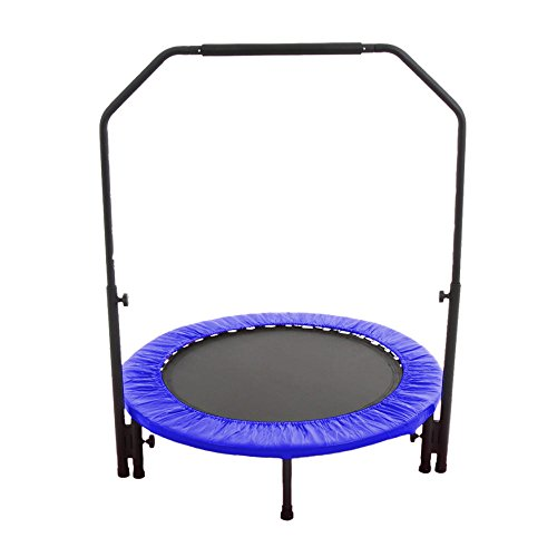 RIORES (リオレス) トランポリン 102cm 無地タイプ 手すり付き(補助棒付) 耐荷重110kg 家庭用 静音設計 大人用 子供用 (ブルー)
