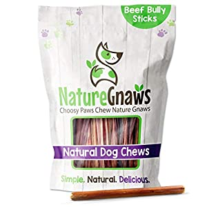 Nature Gnaws Small Bully Sticks for Dogs – Premium Natural Beef Bones – Thin Long Lasting Dog Chew Treats for Light Chewers & Puppies – Rawhide Free – 6 Inch (15 Count)