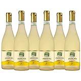 Frascati Superiore DOC | White Wine |