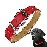 beanspet 犬 ベーシック 首輪 犬首輪 革 おしゃれ かわいい 本革 犬の首輪 いぬ くびわ 犬用品 (M, レッド)