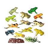 Toyvian Figuras de Ranas Juguetes Divertidos 12 Piezas, Juguetes de Animales de Ranas de...
