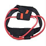 Krafttraining Widerstandsband, Latexfreier Profi-Gürtel für Physiotherapie, Maximaler Widerstandsband für Pilates-Körperübungen im Unterkörper -