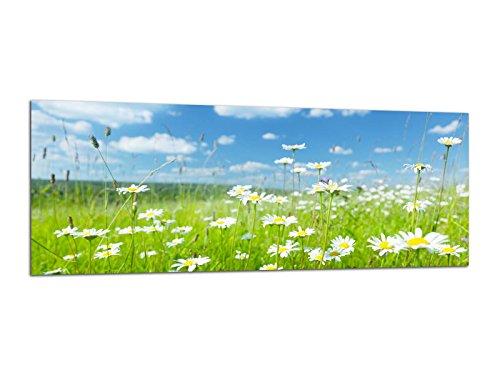Glasbilder Wandbilder 125x50cm Blumenwiese Natur AG312502474 / Deco Glass, Design & Handmade/Eyecatcher, Kunstdruck!