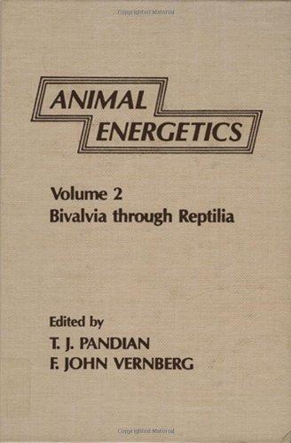 Animal Energetics: Bivalvia Through Reptilia: 2