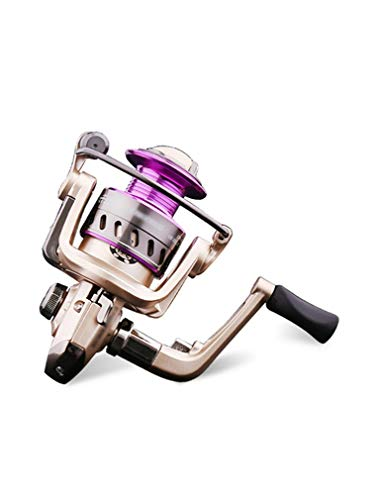 Sea Fishing Reel, Suitable for Salt Water and Fresh Water, The Best Fishing Reel for Fishing Enthusiasts, 6 Stainless Steel Bearings 5.2:1 Gear Ratio (Size : 3000)
