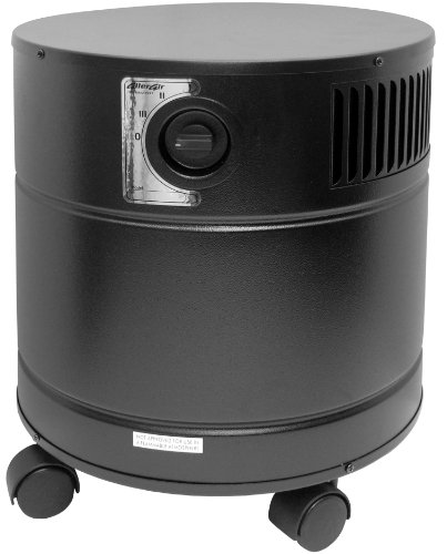 Fantastic Deal! AllerAir Air Purifier 4000 Vocarb Black